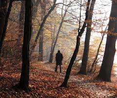 walking_in_autumn