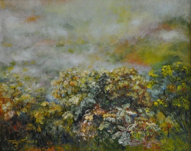Shenandoah trong mù sương 1
