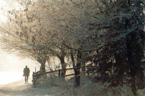 snow_walk