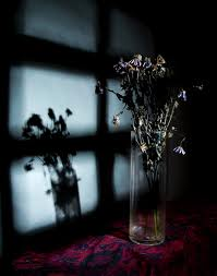 dying_flowers