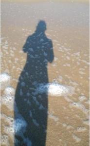 shadow-laihong