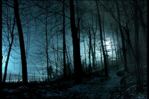 night_shadow