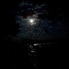 dark_night_lake_series_1