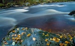 zen_river