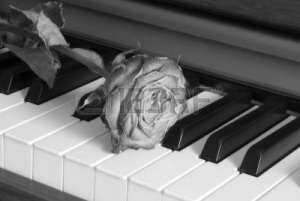 withered_rose_on_piano_keys
