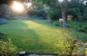 garden_evening