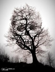 tree_of_death