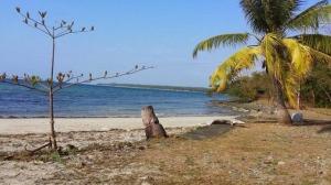 galang_island