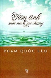 bia_tam_tinh_mot_neo_que_chung