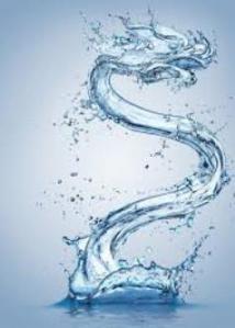 water_dragon