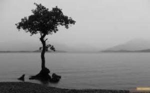 rain_river