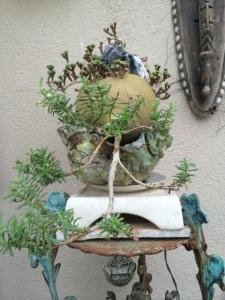bonsai-nguyen_khai