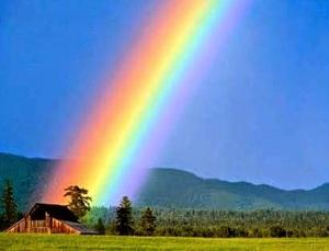 rainbow_zen