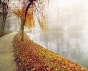 foggy_landscape