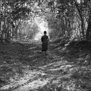 walking_meditation