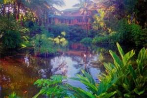 house_in_hilo-hawaii