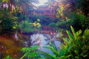 house_in_hilo-hawaii