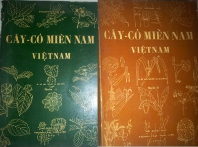 bia_cay_co_mien_nam_viet_nam